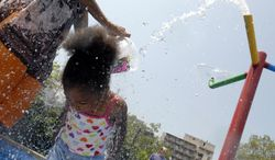 Unique dips her head in the fountain, cooling off from the heat.(Rod Lamkey Jr/The Washington Times)