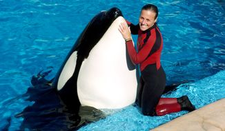 ** FILE ** Trainer Dawn Brancheau poses while performing at SeaWorld in Orlando, Fla., in 2005. Ms. Brancheau was killed in an accident with a killer whale in 2010. (Associated Press/Orlando Sentinel, Julie Fletcher)