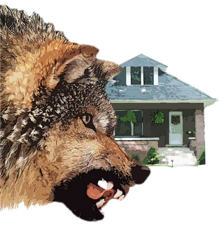 Illustration: Wolf at the door by Greg Groesch for The Washington Times