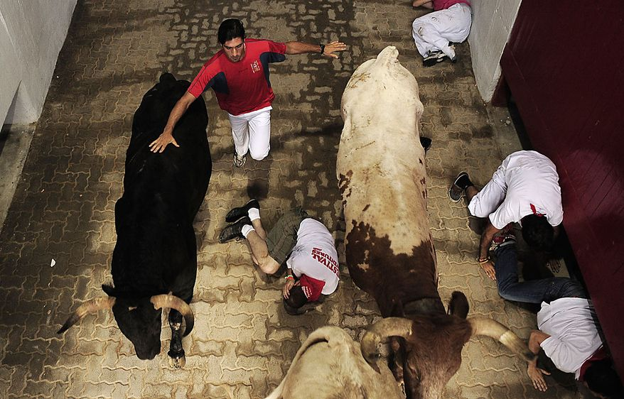 Revelers run next to a Fuente Ymbro ranch fighting bulls into the bullring at the end of the third run of the San Fermin fiestas on Friday, July 9, 2010, in Pamplona, Spain. (AP Photo/Alvaro Barrientos)
