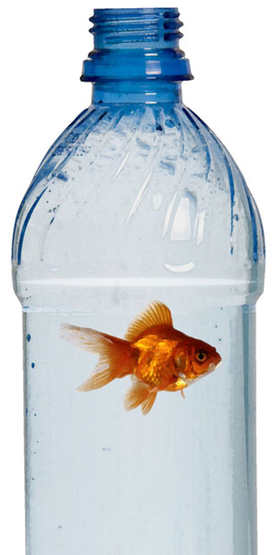 Illustration: Bottle fish by Greg Groesch for The Washington Times