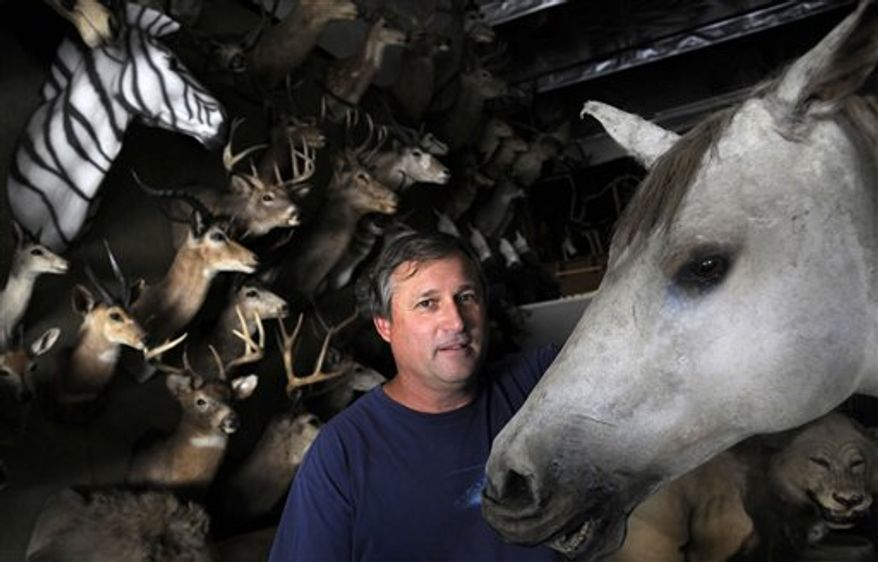 This Wednesday, July 14, 2010 photo shows taxidermist Gary Robbins as he poses for a portrait inside his business, Bischoff's Taxidermy,  in Burbank, Calif. Roy Rogers' horse, Trigger, not shown, was stuffed by taxidermist Everett Wilkensen at Bischoff's Taxidermy 45 years ago.  Robbins bought Bischoff's Taxidermy and Animal FX in 1995 and helped turn the 88-year-old business into one of the largest movie and television animal prop rental warehouses on the West Coast.   (AP Photo/Adam Lau)