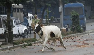 ** FILE ** A cow runs for cover as Indian police and Kashmiri protesters throw stones at one another during a protest in Srinagar, India, on Friday, July 30, 2010. (AP Photo/Dar Yasin)