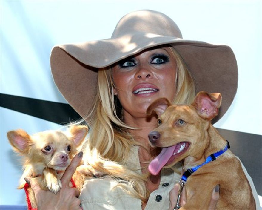 Dan Mathews, Sr. Vice President of PETA, and actress Pamela Anderson play with some of the roughly 50 orphaned dogs that are being moved from Louisiana to Virginia, Monday, Aug. 2, 2010, in New Orleans. The dogs have been orphaned by the Deepwater Horizon oil spill in the Gulf of Mexico. Anderson, PETA's honorary director, paid all the expenses and costs to relocate the dogs. (AP Photo/Chuck Cook)