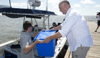 Retired U.S. Coast Guard Adm. Thad Allen (right), the national incident commander for the Gulf of Mexico oil spill, helps load a National Oceanic and Atmospheric Administration boat with rehabilitated Kemp's Ridley sea turtles to be released off the coast of Cedar Key, Fla., on Wednesday, Aug. 18, 2010. (AP Photo/Phil Sandlin)