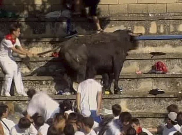 In this TV image provided by ETB via APTN a man holds the bull by the tail after it jumped 10 yards from the ring into the stands at the Tafalla bullring in Spain Thursday Aug. 19, 2010 causing panic as it lurched through the screaming crowd, charging and tossing everything he could. Regional officials say 40 people were injured when the bull leapt into the packed grandstands. (AP Photo/ETB via APTN)