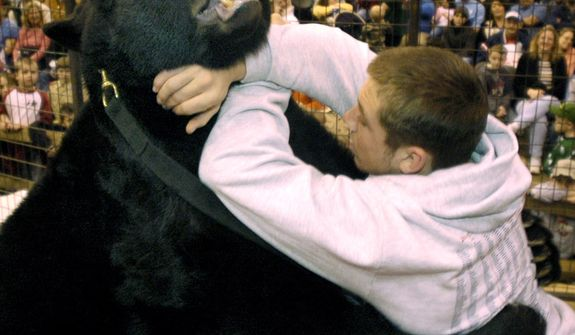 ** FILE ** In this March 18, 2006 file photo, during an exhibition wrestling match at a sportsmen's show in Cleveland, Lance Palmer takes on Ceaser, a 650-pound black bear owned by Sam Mazzola. On Thursday, Aug. 19, 2010, another bear owned by Mazzola fatally mauled its caretaker at Mazzola's animal sanctuary in Columbia Station, Ohio. Mazzola accumulated dozens of dangerous, exotic animals despite past convictions and losing his license after animal rights activists complained he was making money by letting people wrestle bears. (AP Photo/Jamie-Andrea Yanak, File)