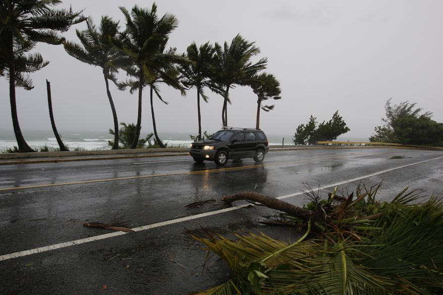 The top of a palm tree lies beside the road after being blown off by winds from the approaching Hurricane Earl in San Juan, Puerto Rico, on Monday, Aug. 30, 2010. (AP Photo/Andres Leighton)