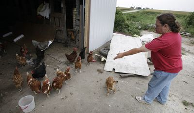 Deanna Arnold feeds chickens on her farm on Thursday, Sept. 2, 2010, near Garrison, Iowa. Arnold, a former worker at Wright County Egg facilities, said she reported problems such as leaking manure and dead chickens to USDA employees, but was ignored. (AP Photo/Charlie Neibergall)