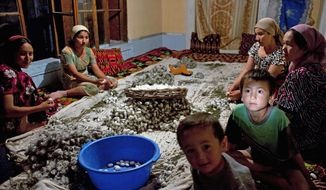 Family members, including the youngest, clean silkworm cocoons in Kokand, Uzbekistan, in June 2009. The silkworm business is a state monopoly, and farmers facing fines or the loss of land leases if they miss quotas need the whole family to work. (Associated Press)