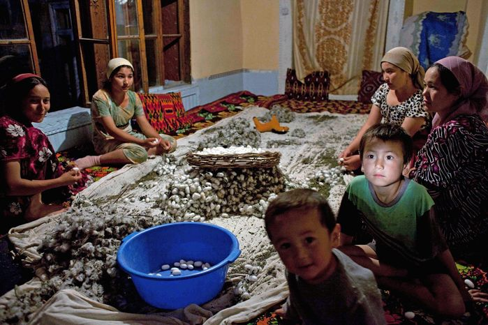 Family members, including the youngest, clean silkworm cocoons in Kokand, Uzbekistan, in June 2009. The silkworm business is a state monopoly, and farmers facing fines or the l