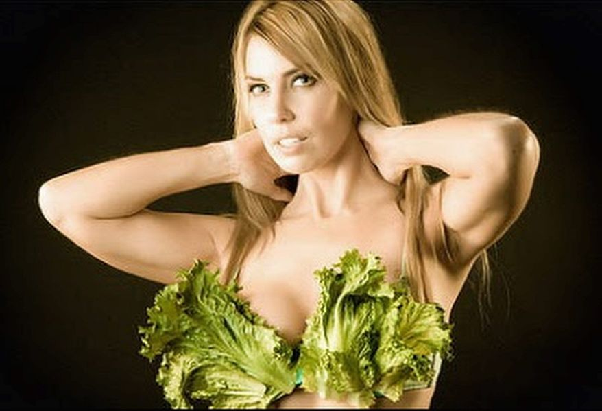 """PETA People for the Ethical Treatment of Animals has offered the services of its """"Lettuce Ladies"""" to the vice president in serving vegetarian food to returning troops."""