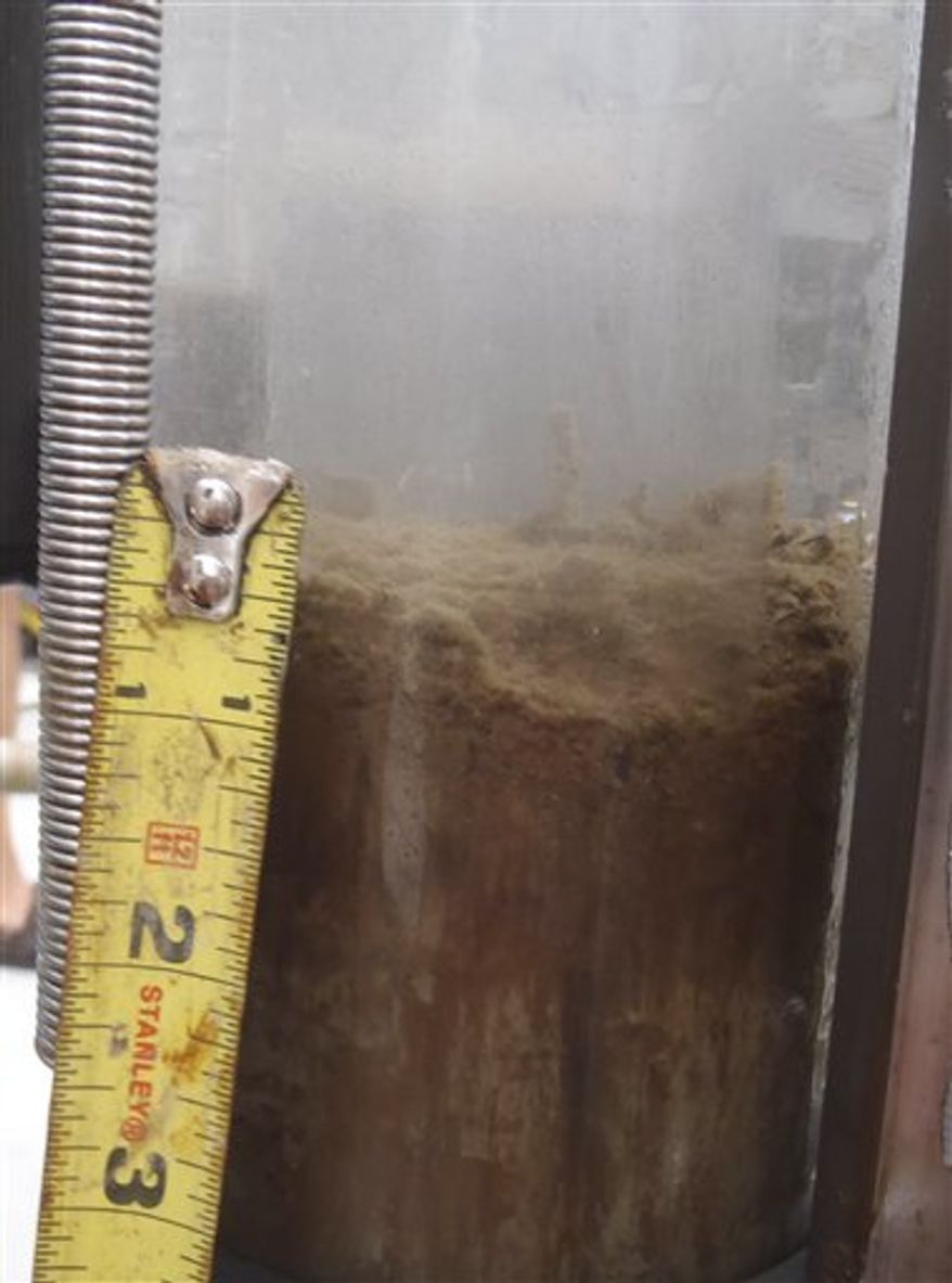 "This undated handout photo provided by Samantha Joye, UGA Department of Marine Sciences, shows a layer of oil on a sediment core. Researchers are finding oil dripping ""all over the place"" on the Gulf of Mexico sea floor, some as much as two inches thick. A University of Georgia scientific cruise is collecting at least ten instances of what appears to be fresh oil on the sea floor emanating out from the site of BP oil rig disaster.  (AP Photo/Samantha Joye)"