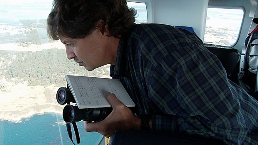 """In this still image taken from video, Brad Hanson, a NOAA wildlife biologist, views killer whales from the air aboard the Zeppelin airship """"Eureka,"""" near San Juan Island, Wash., Wednesday, Sept. 8, 2010. (AP Photo/Ted S. Warren)"""