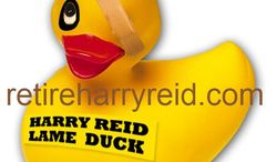 A former Republican candidate is calling for rubber ducks to be sent to Senate Majority Leader Harry Reid, Nevada Democrat, after the midterm elections. (Photograph courtesy of Danny Tarkanian)