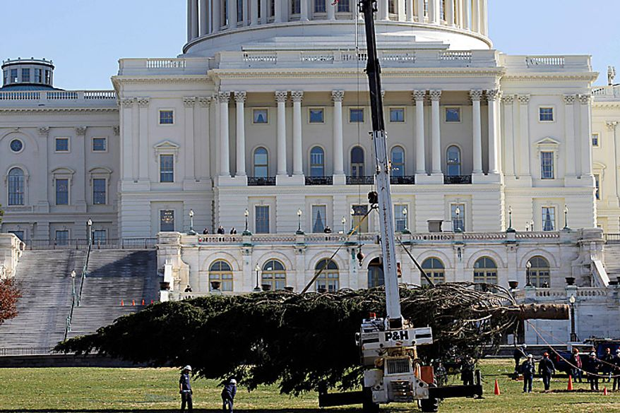 The Capitol Christmas tree is driven to the spot on the West Front of the Capitol in Washington, Monday, Nov. 29, 2010. The tree was cut down earlier this month in the Bridger-Teton National Forest in northwest Wyoming. (AP Photo/Alex Brandon)