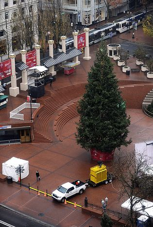 A Christmas tree stands in Pioneer square on Saturday Nov. 27, 2010, the morning after a car bomb plot was foiled during the annual tree lighting ceremony. Federal agents in a sting operation arrested a Somali-born teenager just as he tried blowing up a van he believed was loaded with explosives at the crowded ceremony, authorities said. (AP Photo/Greg Wahl-Stephens)