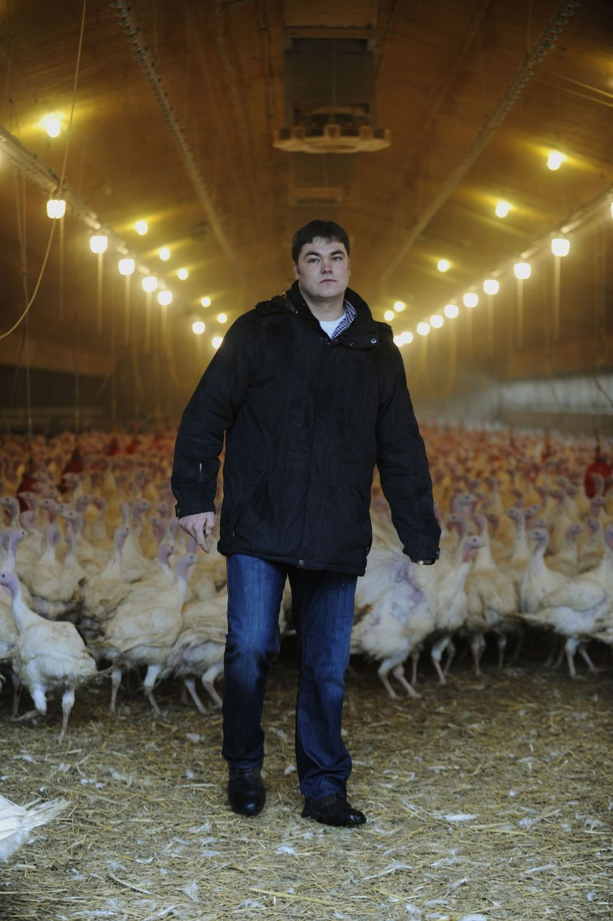 Turkey hens breeder Helge Vosteen stands in his hen house in Neerstedt near Oldenburg northern Germany on Jan. 6, 2011, after it was precautionary closed. German authorities have stopped more than 4,700 farms from selling their meat and eggs as a precautionary measure against a growing scandal over animal feed contaminated with cancer-causing chemicals that is also affecting exports. (AP Photo/Dapd/David Hecker)