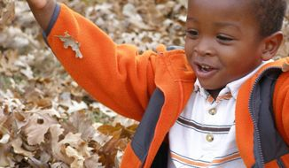 Ross Haskell's adopted son, Alexander Griffith-Haskell, plays in the autumn leaves outside the family's home in Wichita, Kan. For the most part, the Haitian orphans are thriving after a year with American families. (Ross Haskell via Associated Press)
