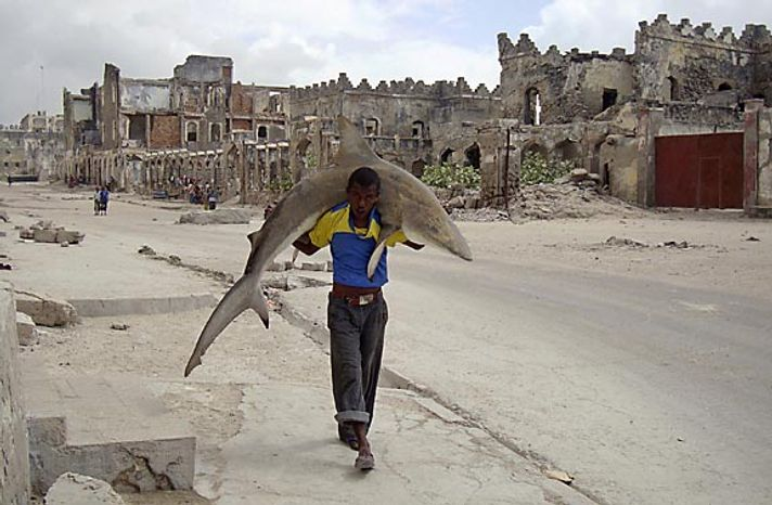 In this photo provided by World Press Photo, the 1st Prize Daily Life Single of the 2011 World Press Photo Contest by Omar Feisal, Somalia, Reuters, shows a man carrying a shark through the streets of Mogadishu, S