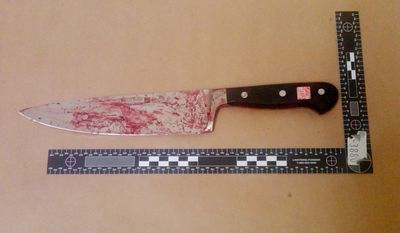 This photo released by the New York Police Department on Saturday, Feb. 12, 2011, shows a blood-stained kitchen knife that, according to police, Maksim Gelman used during a 28-hour stabbing rampage on Friday, Feb. 11. Police said three people died of knife wounds and a fourth was run down by Mr. Gelman as he made his getaway in a hijacked car. (AP Photo/New York Police Department)