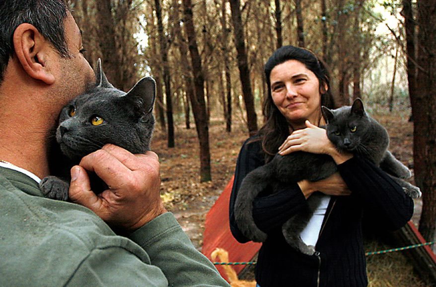 """Diane Moreau (right) holds a cat while touring the Caboodle Ranch with her husband Lorenzo (left) in Lee, Fla., on Thursday, Jan. 20, 2011. The couple were on the way to winter over in the Florida Keys when they made a special stop at the cat ranch. Mrs. Moreau says she was inspired to visit the place after seeing it featured on """"The Colbert Report."""" (AP Photo/St. Petersburg Times, Lara Cerri)"""