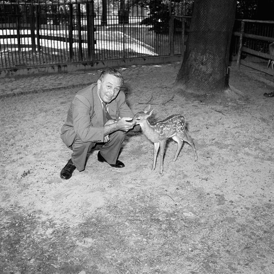 "Walt Disney spends some time with a young deer at the West Berlin Zoo on July 2, 1958, while attending the city's 36-nation film festival. ""Bambi"" hit theaters during World War II, a time when the chance of parental death would have been unusually present, which may have influenced Walt Disney's team of storytellers. (Associated Press)"