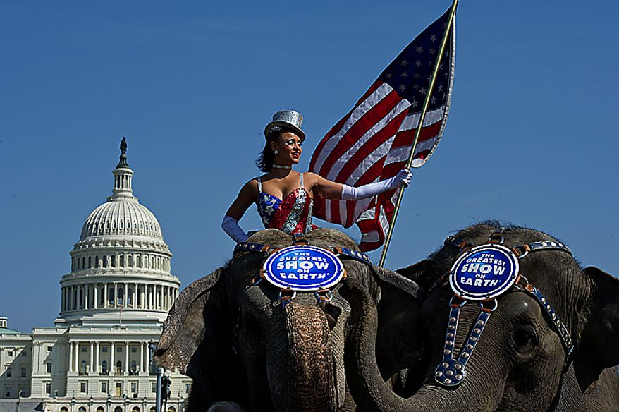 The Ringling Bros. and Barnum & Bailey Circus' annual Pachyderm Parade makes a stop in front of the U.S. Capitol in Washington on Tuesday, March 22, 2011, before heading on to the Verizon Center, where the circus will perform. (Barbara L. Salisbury/The Washington Times)