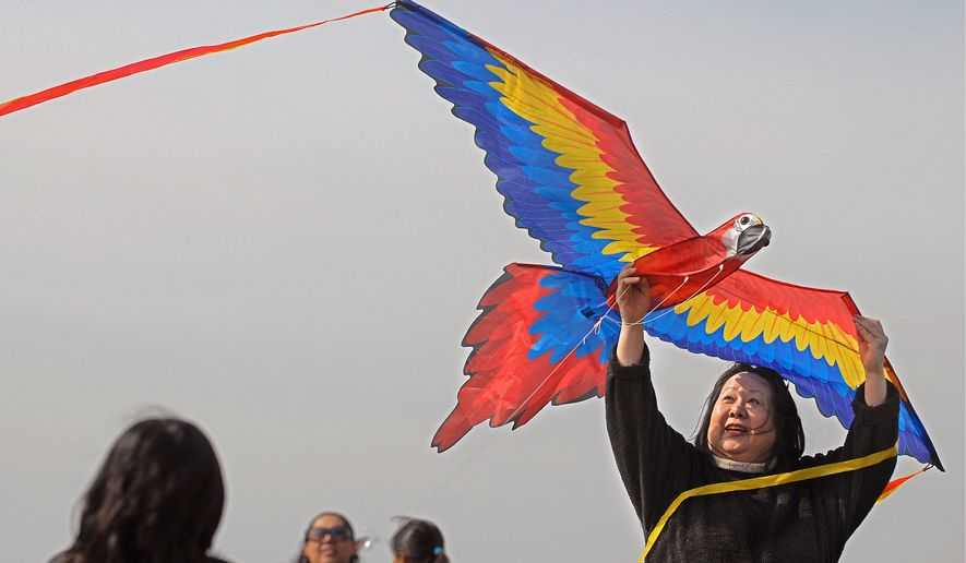 The Smithsonian Kite Festival may not take off as planned this year because of the winds of politics in Washington. The kite festival traditionally kicks off festivities for the National Cherry Blossom Festival, which also would be canceled by a federal government shutdown. (The Washington Times)