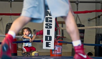 Od Jargal, 2, of Arlington, Va., waits ringside as his dad trains at Crawford's Training and Fitness at the Laurel Boys & Girls Club in Laurel on Monday, Aug. 1, 2011. The gym has been open for 15 years and trains everyone from kids to pros. (Barbara L. Salisbury/The Washington Times)