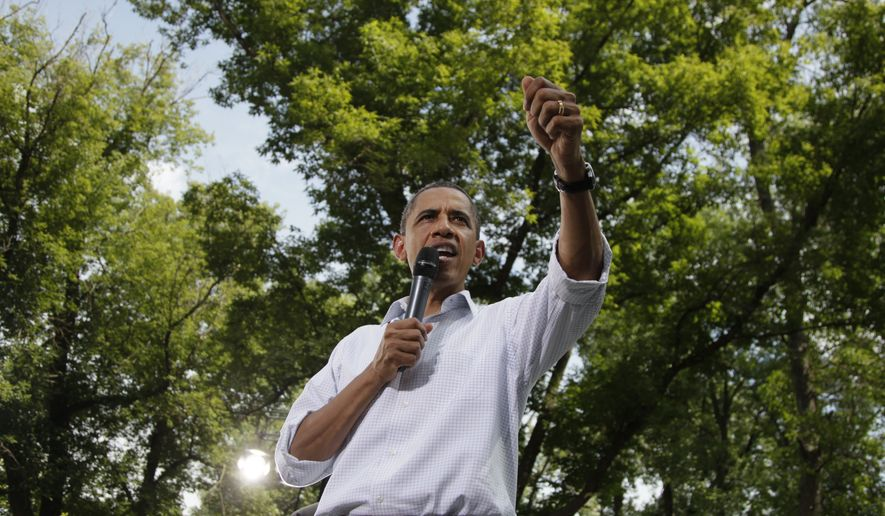 President Obama speaks Aug. 15, 2011, during a town hall meeting at Lower Hannah's Bend Park in Cannon Falls, Minn., during his three-day bus tour devoted to the economy. (Associated Press)