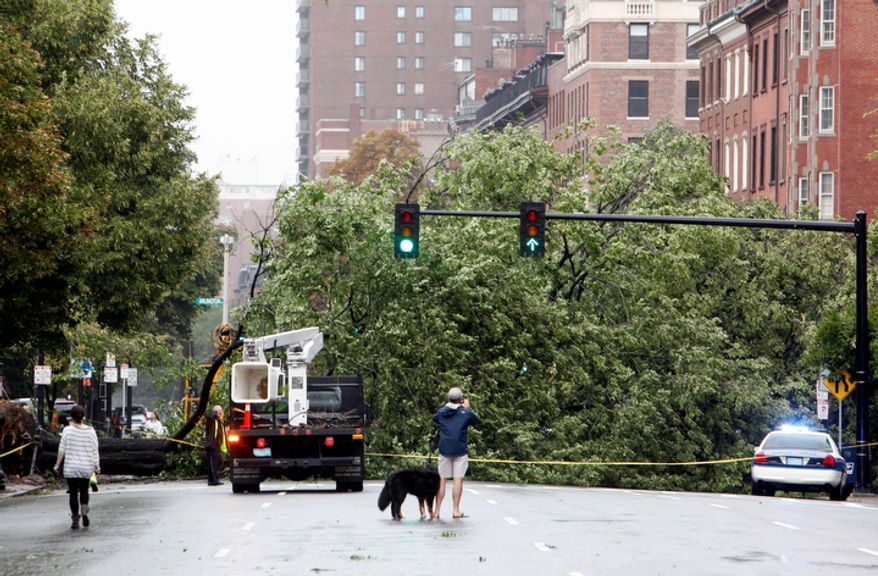 A large tree lies across Beacon Street in Boston in the aftermath of hurricane Irene, Sunday, Aug. 28, 2011. (AP Photo/Michael Dwyer)