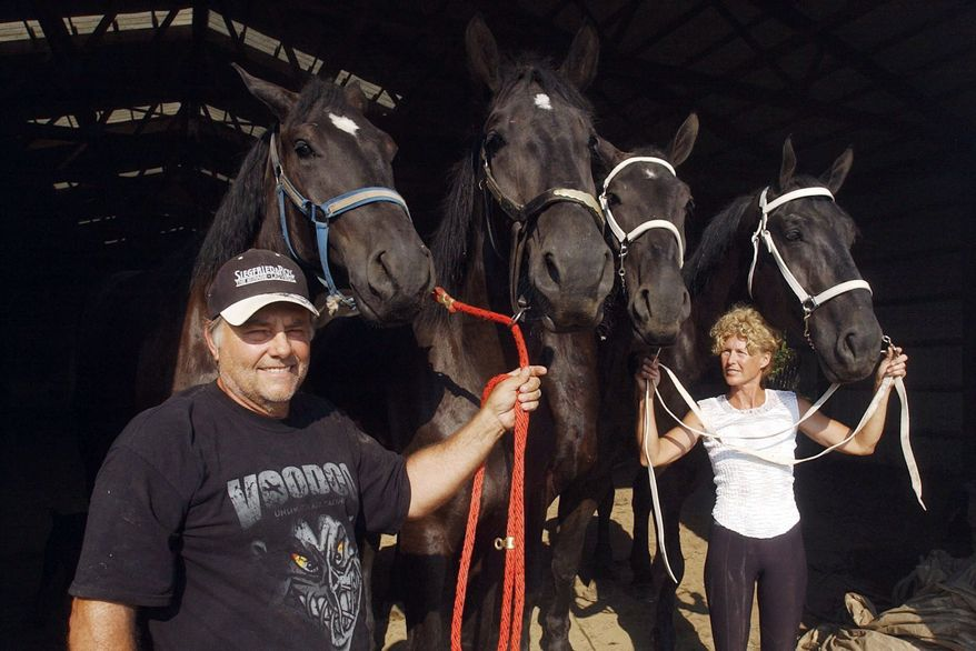Terry Thompson and his wife, Marian, lead horses on their farm west of Zanesville, Ohio, in August 2008. She is trying to reclaim three leopards, two primates and a young grizzly from the Columbus Zoo, which has held them since her husband opened the cages of 56 exotic animals before killing himself Oct. 18. (Associated Press)