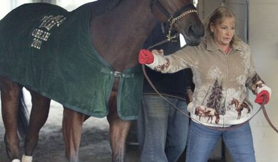 Breeders Cup Classic hopeful Havre de Grace walks the shedrow with assistant trainer Cindy Jones following a morning gallop at Churchill Downs in Louisville, Ky., Wednesday, Nov. 2, 2011. The Breeders' Cup two-day championships are Nov 4-5 at Churchill Downs. (AP Photo/Garry Jones)