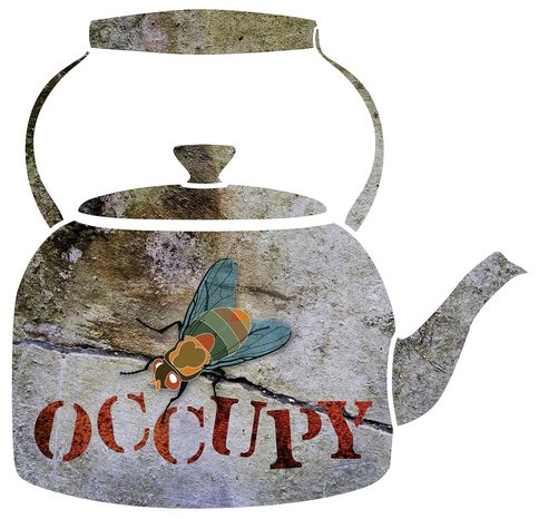 Illustration: Occupy fly by Greg Groesch for The Washington Times