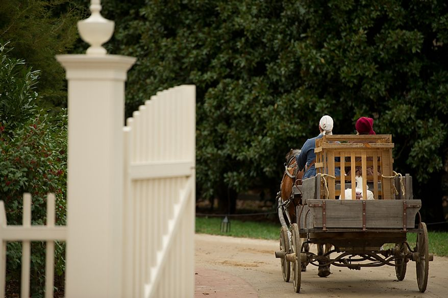 Liberty, the turkey pardoned by President Obama, is carted off to its pen after being welcomed to Mount Vernon in Virginia on Nov. 23, 2011. (Andrew Harnik/The Washington Times)