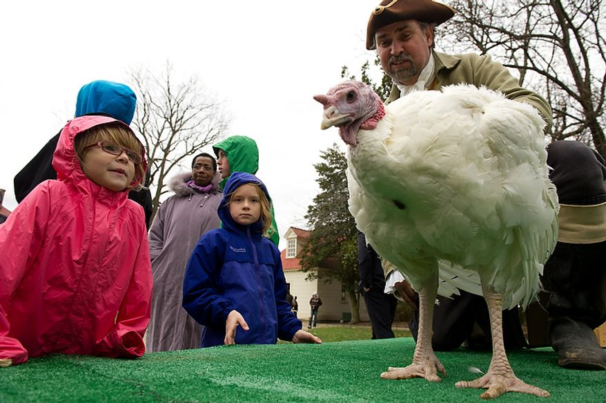 Leta Cannon (left), 5, and Sarah Frances Gilroy (center), 7, check out Liberty, the turkey pardoned by President Obama, as it is welcomed to Mount Vernon in Virginia on Nov. 23, 2011. (Andrew Harnik/The Washington Times)