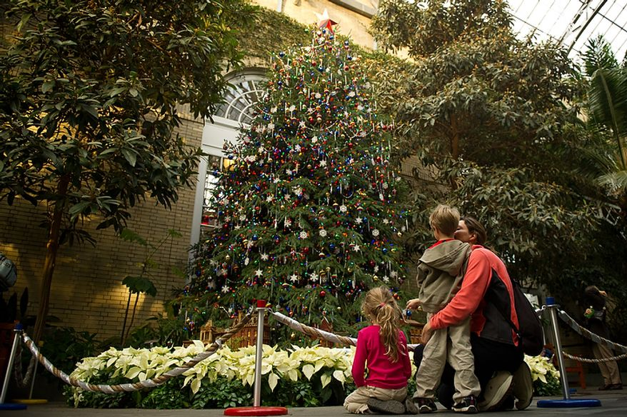 """Stella Melley of Alexandria looks at the U.S. Botanical Garden's Christmas tree, part of the """"Seasons Greenings"""" exhibit, which she visits with her 5-year-old daughter, Quinn, and 4-year-old son, Griffin, on Tuesday, Dec. 20, 2011, in Washington. (Andrew Harnik/The Washington Times)"""