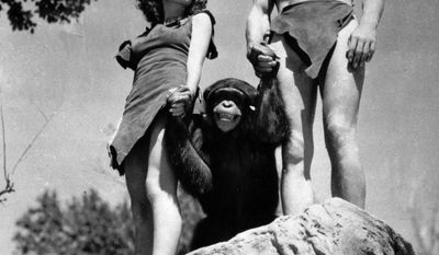 """** FILE ** A file photo shows Johnny Weissmuller (right) as Tarzan, Maureen O'Sullivan as Jane, and Cheetah the chimpanzee in a scene from the 1932 movie """"Tarzan the Ape Man."""" A Florida animal sanctuary says Cheetah died Saturday of kidney failure at age 80. (AP Photo/File)"""