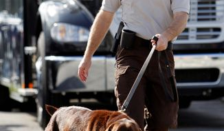 Miami-Dade Detective Douglas Bartelt and narcotics detector canine Franky give a demonstration in Miami. Franky's super-sensitive nose is at the heart of a question being put to the U.S. Supreme Court: Does a police K-9's sniff outside a house justify a search warrant or is it by itself an unconstitutional search? (Associated Press)