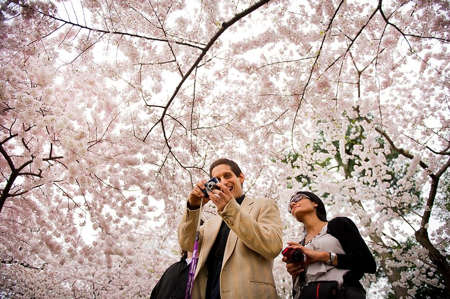"Autistic adult James L., center, with Community Services for Autistic Adults and Children, based in Montgomery Village, Md., is accompanied by staff member Dide Cimen, right, as he takes photographs of the Cherry Blossoms along the Tidal Basin, Washington, D.C., Wednesday, March 21, 2012. The ""InFocus Project†is a way for adults with autism to develop forms of self expression and social skills while producing work that has been featured in art shows, given to donors to C.S.A.A.C., and sold on an online store. (Andrew Harnik/The Washington Times)"