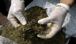 **FILE** A police officer unpacks marijuana in Cali, Colombia, on June 3, 2009. The Spanish village of Rasquera, Spain, is voting in a regional referendum to decide if to allow the cultivation of marijuana as a source of revenue to pay off municipal debt, with a population of some 960 people in the northeastern Catalonia region. (Associated Press)