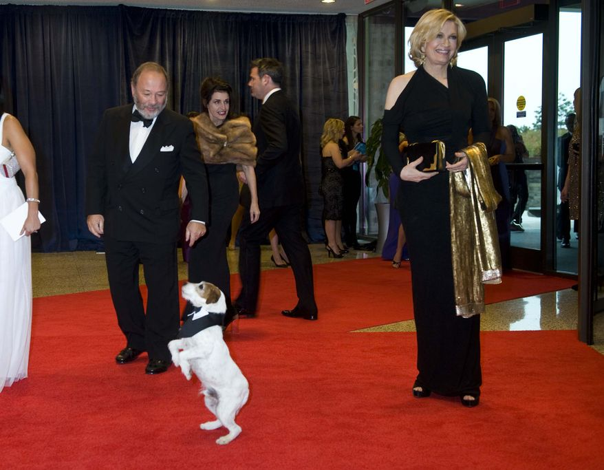 """Uggie, the canine star of the film """"The Artist,"""" walks the red carpet with Diane Sawyer at the White House Correspondents' Association dinner on Saturday, April 28, 2012, in Washington. Uggie was a guest of The Washington Times. (AP Photo/Kevin Wolf)"""