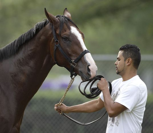 Hot walker Cesar Zarco works with Kentucky Derby hopeful Union Rags at Churchill Downs in Louisville, Ky., Monday, April 30, 2012. The Kentucky Derby horse race is scheduled for Saturday, May 5. (AP Photo/Charlie Riedel)