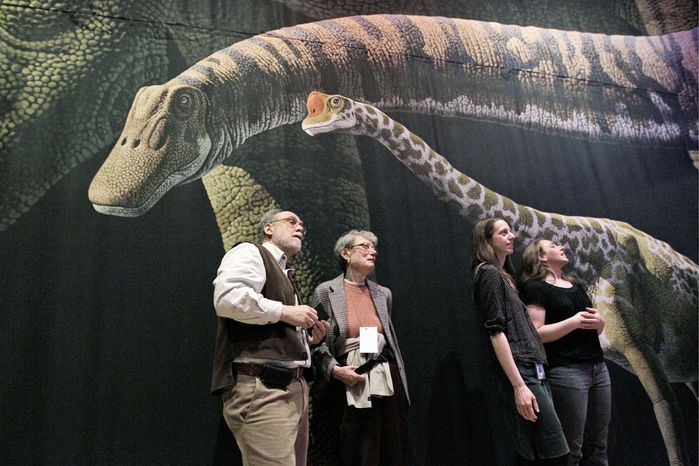 """Visitors to the American Museum of Natural History in New York inspect a detailed model of a 60-foot-long Mamenchisaurus at """"The World's Largest Dinosaurs'"""" exhibit. The exhibition explored the biology of the long-necked and long-tailed sauropods. A new study in the journal Current Biology suggests that sauropods produced enough methane, through burps and flatulence, that it helped keep an already warm Earth warmer. (Associated Press)"""