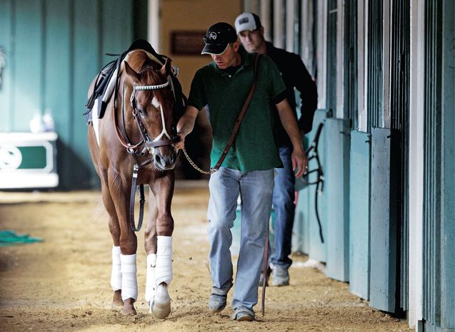 Kentucky Derby Winner I'll Have Another is led through a barn by foreman Benjamin Perez before walking the track at Pimlico Race Course in Baltimore on Wednesday. The Preakness Stakes, the second leg of the Triple Crown, is May 19. (Associated Press)