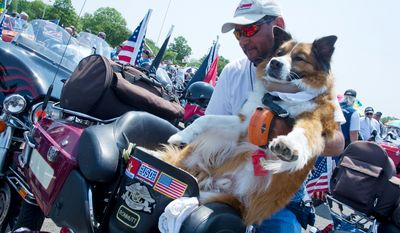 Butch Ewing, of Kipling, N.C. loads Chewy the biker dog onto the back of his motorcycle as the two prepare to ride in the annual Rolling Thunder event. Chewy has logged thousands of miles on a motorcycle over the past several years, including 6,500 miles in the last 12 days, when he traveled across the country to honor fallen heroes, wounded warriors and others. (Barbara L. Salisbury/The Washington Times)