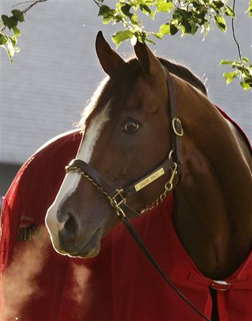 Union Rags is 6-1 on the morning line for Saturday's Belmont Stakes. (Associated Press)