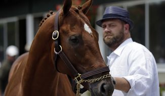 Kentucky Derby and Preakness winner I'll Have Another stands June 8, 2012, with trainer Doug O'Neill during a news conference at Belmont Park in Elmont, N.Y. I'll Have Another's bid for a Triple Crown ended with the shocking news that the colt was out of the Belmont Stakes the following day due to a swollen left front tendon. (Associated Press)