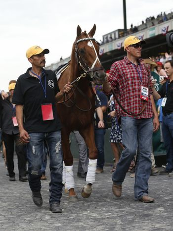 I'll Have Another is led to the winner's circle by groom Ignocenzio Diaz and Benjamin Perez for a retirement ceremony at Belmont Park in Elmont, N.Y., on Saturday, June 9, 2012. (AP Photo/Mike Groll)